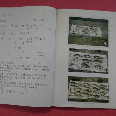 P1030926.jpg