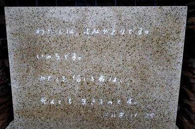 P1100964 (2).jpg